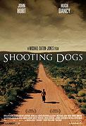 Střelba na psy