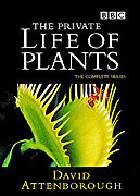 Soukromý život rostlin