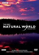 Svět přírody