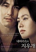 A Moment to Remember _ Nae meori sogui jiugae (2004)