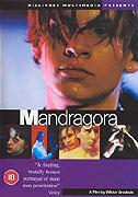 Poster k filmu        Mandragora