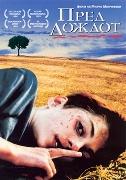 Пред дождот (1994)