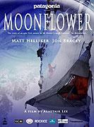 Moonflower (2011)