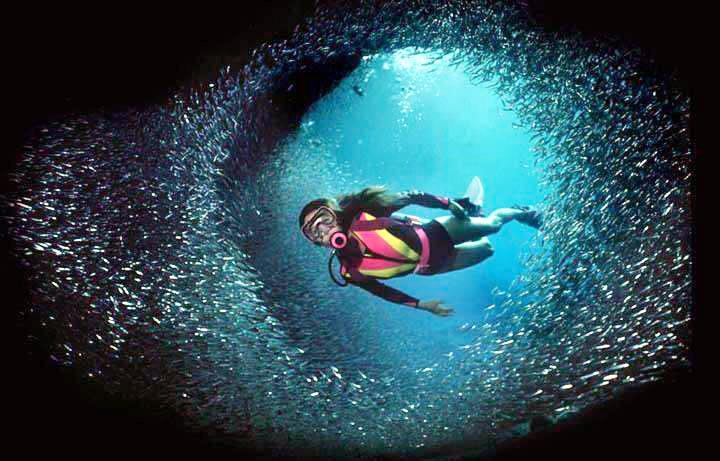 Potápění/Plavání...... prostě vodu :D