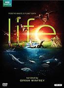 Poster k filmu        Život (TV seriál)