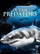 Ocean Predators