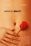 Poster k filmu        Americká krása