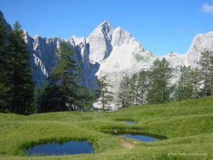 Julské Alpy - Jalovec