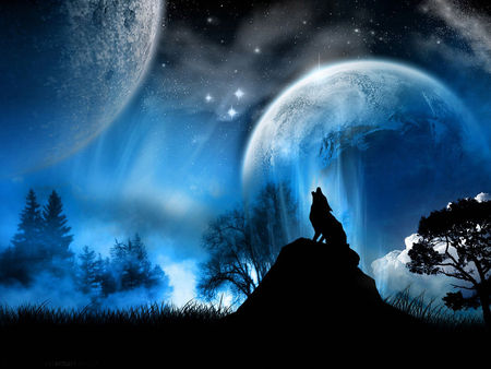 WolfR