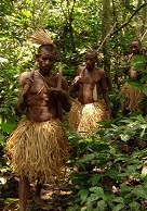 Pygmies: The Agony of the Green God