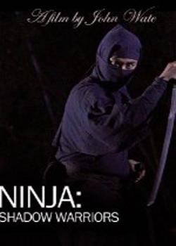 Ninja: Shadow Warriors (2012)