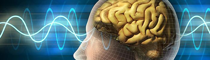 Brain Games (2011) - Velmi zajímavý a inspirativní dokumentární a interaktivní seriál, který si permanentně hraje s divákovým podvědomím.