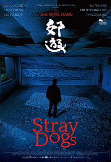 Stray Dogs 2013