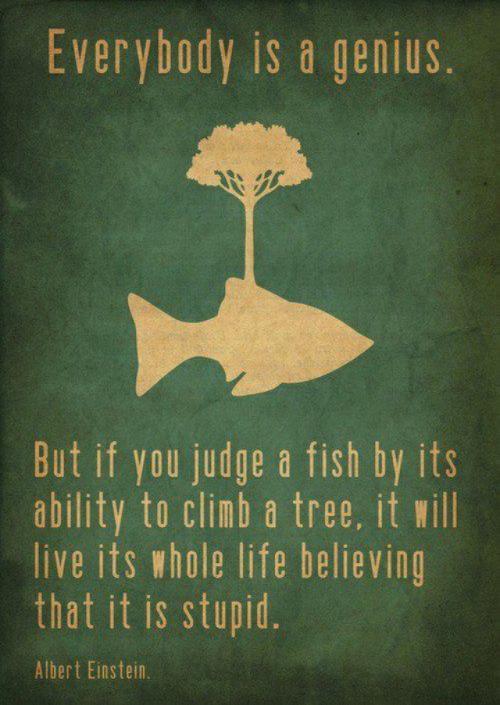 Judge a fish