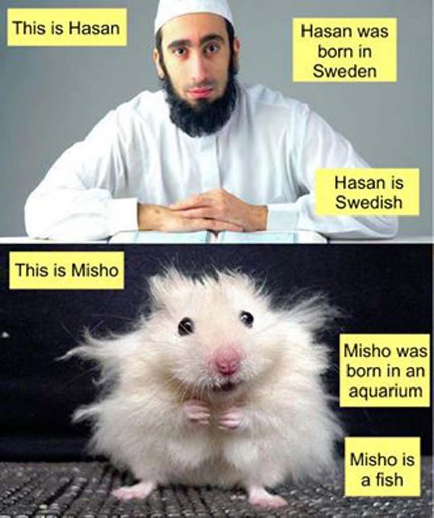 Hasan Misho
