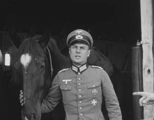 Kone kapitána kavalérie