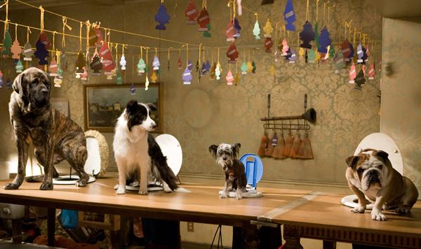 Hotel pro psy (2009) 2