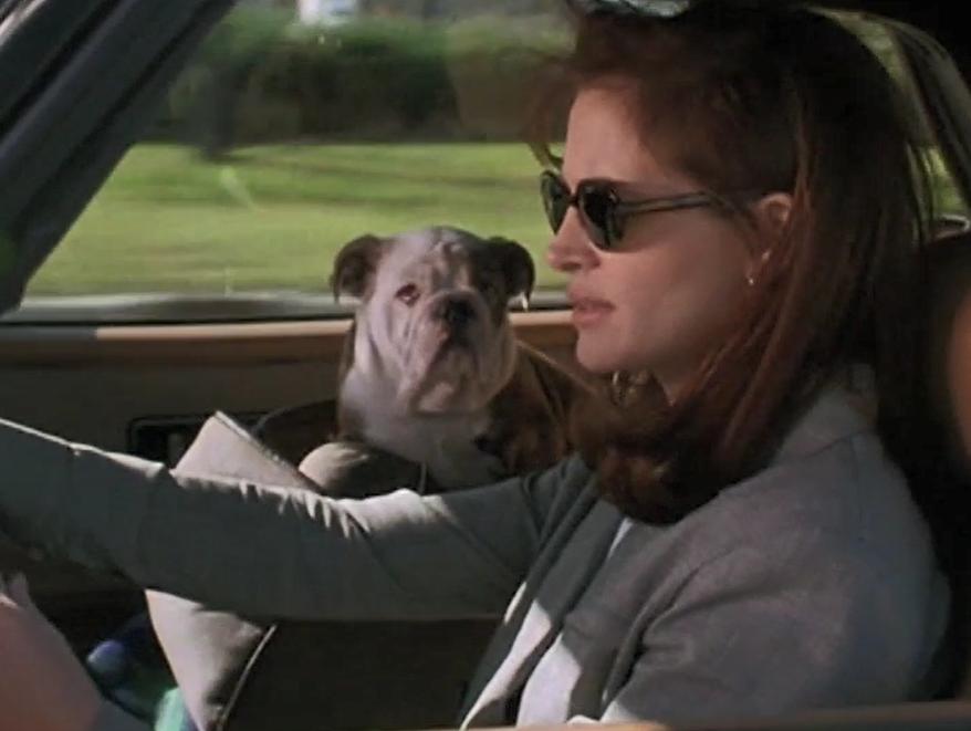 Zbožňuju trable (1994) 2