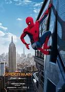 Spider 4*