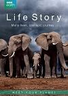 Life Story/Příběh života